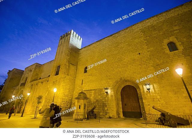 Almudaina palace in Palma de Majorca by night. Spain