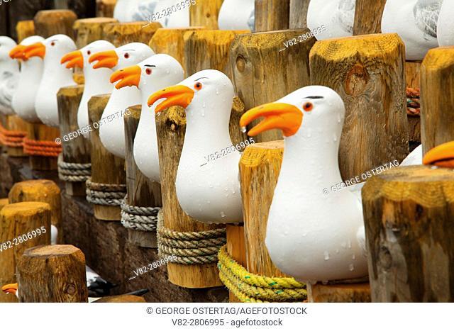 Seagull souvenirs, Rockaway Beach, Oregon