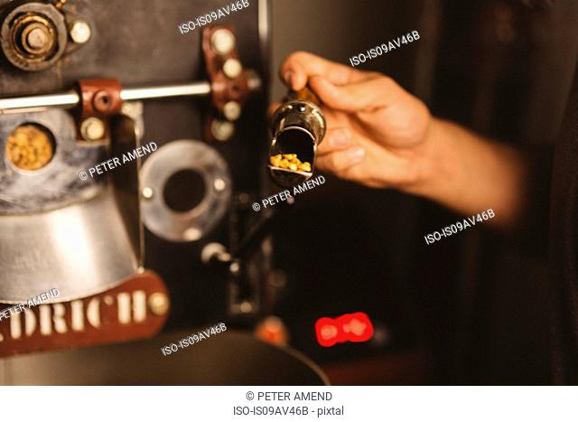 Man putting coffee beans into coffee roaster, close-up