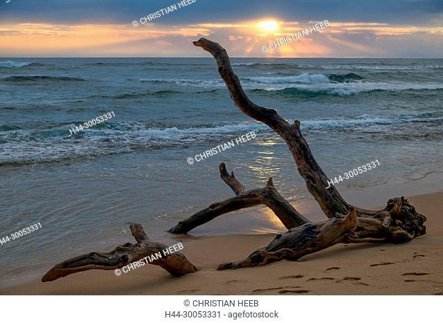 South Pacific, USA, Hawaii, Hawaiian, Island, Kauai, beach at sunrise