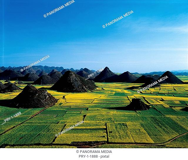 the farmland,Luopng,Yunnan Province,China