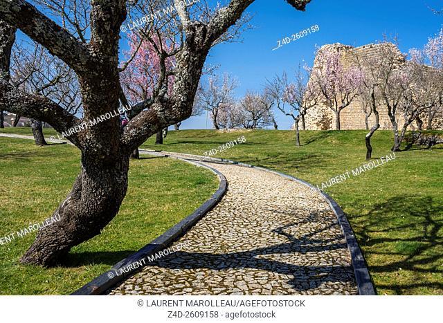 The Ruins of the Castle of Miranda do Douro, Braganca District, Norte Region, Portugal, Europe