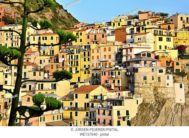 Colourful Manarola, Village of Cinque Terre, Italy