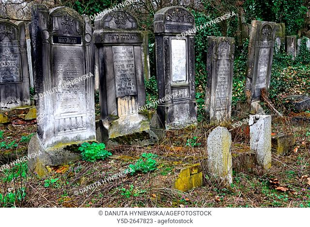 Jewish Cemetery, Bracka street in Lodz, this biggest Jewish cemetery in Europe contains over 180 000 graves and 65 000 tombstones