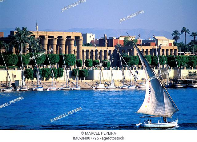 Egypt, Luxor, feluccas on the Nile