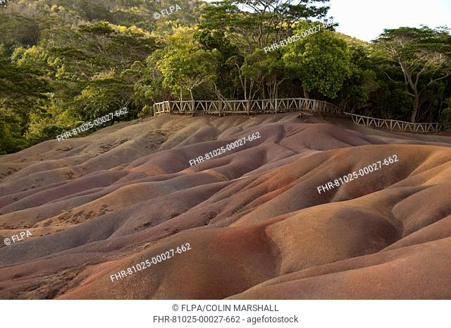 View of sand dunes comprising of different coloured sands, caused by decomposed basalt gullies of ferralitic soil, red colour caused by iron sesquioxydes and...