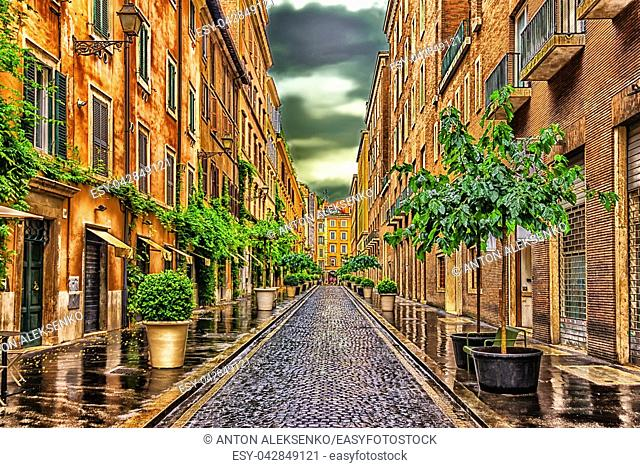 Fashionable cobbled Italian street with planters after the rain