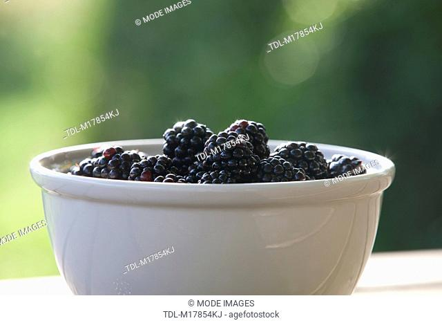 Blackberries in a cream ceramic bowl