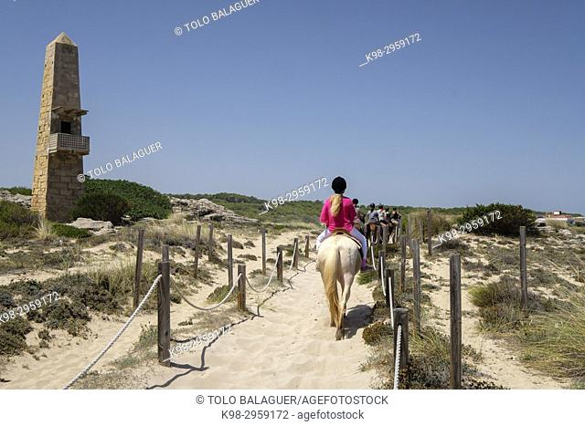 Horse riding through dunes, Son Serra de Marina, Mallorca, Balearic islands, Spain
