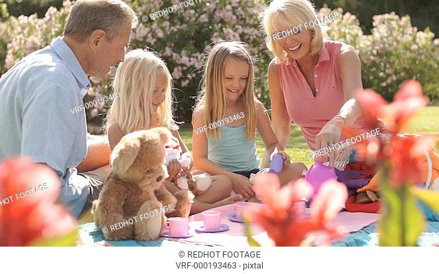 Grandparents and two granddaughters having teddy bears picnic in park