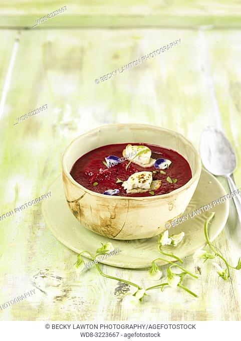crema fria de remolacha / Beet cold cream