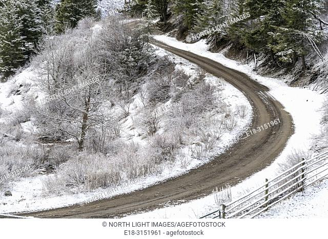 Canada, BC, Bridesville. Overhead view of curving dirt road surrounded by snowy landscape