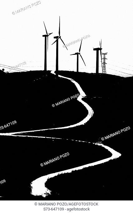 Wind generators. Tarifa. Cádiz province. Spain