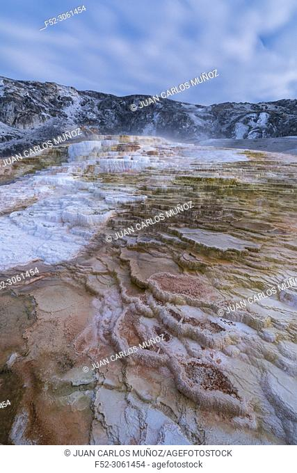 Mammoth Hot Springs, Yellowstone National Park, Unesco World Heritage Site, Wyoming, Usa, America