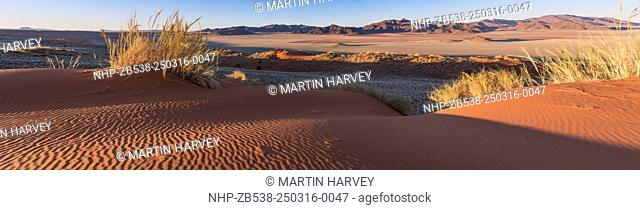 The NamibRand Nature Reserve is a private nature reserve in Southwestern Namibia on the Namib Desert. Founded in 1992 consisting 172,200 hectares (1,722 km²)