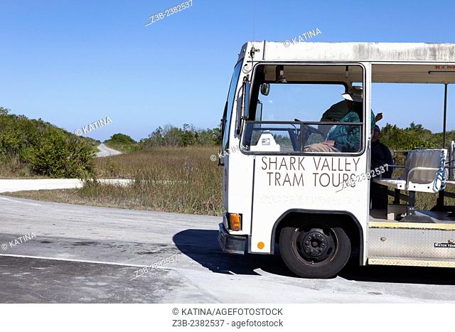 Shark Valley Tram Tour bus, tourism in Shark Valley area, Everglades National Park, Florida, FL, USA