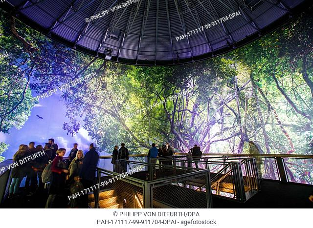 """Visitors looking at the work """"""""Amazon"""""""" by artist Yadegar Asisi in the interior of the Panoramic Rotunda in the Hanover Zoo in Hanover, Germany"""