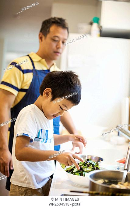 Family home. A man in a blue apron preparing a meal with his son