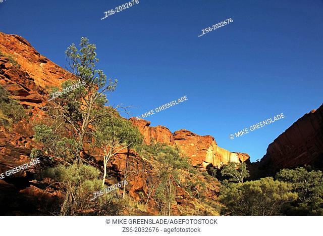 Kings Canyon; Northern Territory, Australia