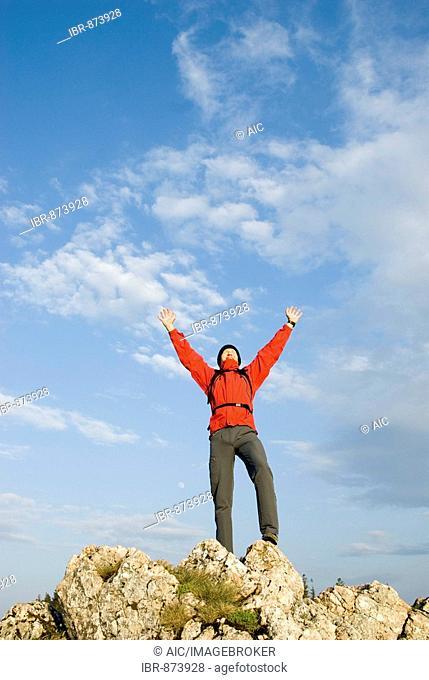 Man happy at reaching the summit, Reichraming, Upper Austria, Europe