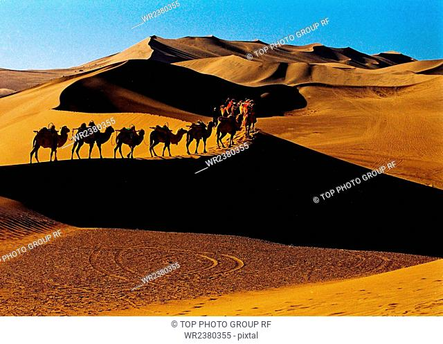 Qinghai Province the desert
