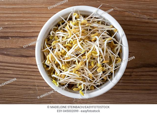 Sprouted fenugreek seeds in a bowl, top view