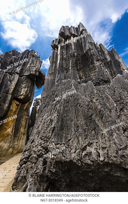 The Stone Forest, limestone formations at Shilin, Yunnan Province, China. Looking like stalagmites or petrified trees gave the formations the name