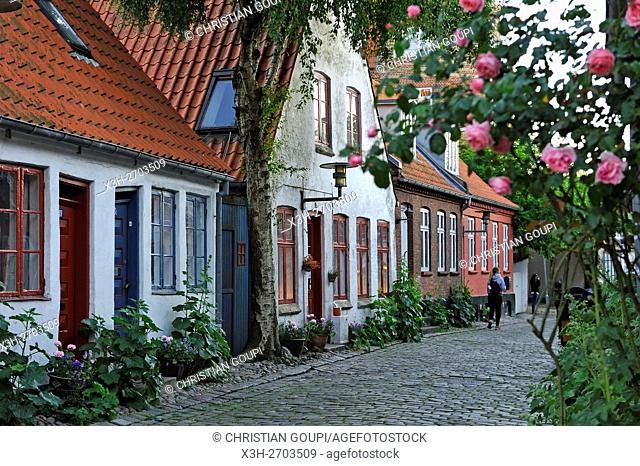 Mollestien lane, picturesque cobbled street right in the centre of Aarhus, Jutland Peninsula, Denmark, Northern Europe
