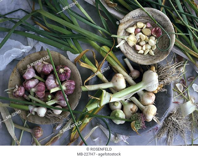 Garlic, Sorts, various