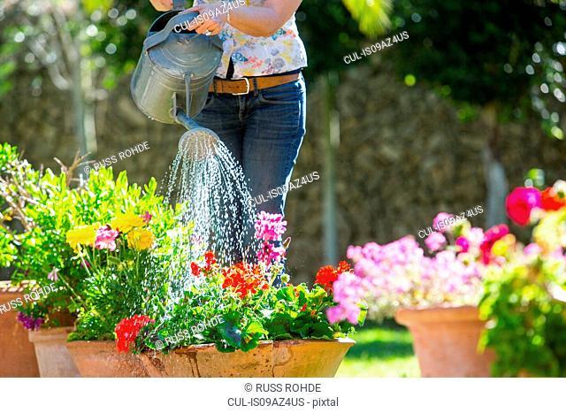 Cropped view of woman watering flower pots in garden
