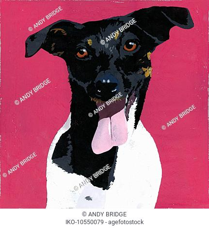 Painting of Jack Russell Terrier dog