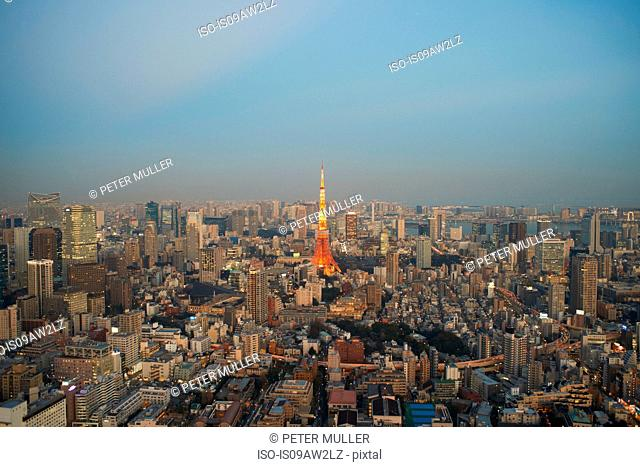 Cityscape view with Tokyo Tower, Tokyo, Japan