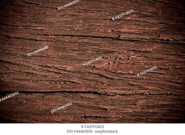 Texture of old bark wood use for natural background