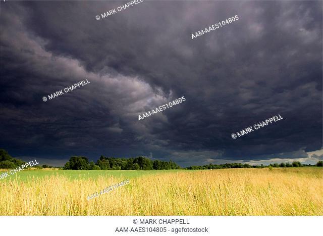 Storm Clouds over Fields, Bialowieza, Poland