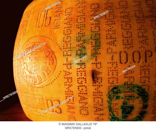 Close-up of a parmesan cheese in the storage room