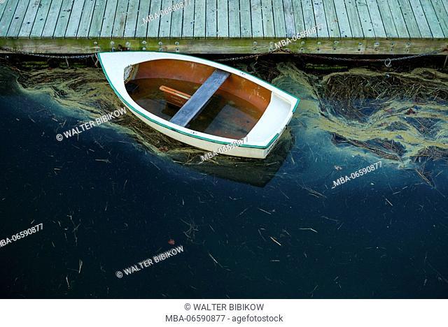 USA, Massachusetts, Cape Ann, Annisquam, Annisquam Harbor, boat