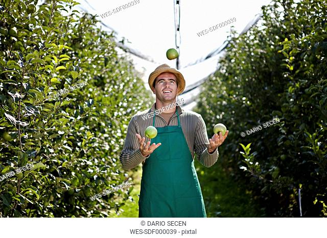 Croatia, Baranja, Young man juggling with apples in apple orchard