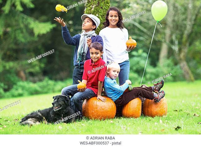 Four children in garden with pumpkins and dog