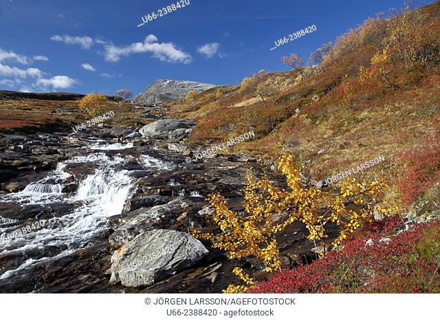 River, Snasahögarna, Jamtland, Sweden