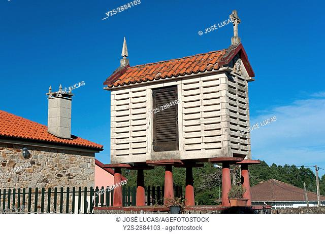 Traditional galician Horreo (granary), Ponteceso, La Coruna province, Region of Galicia, Spain, Europe