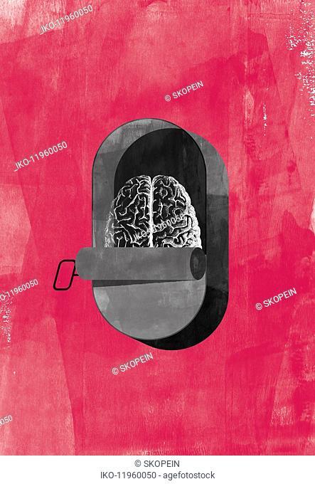 Human brain inside of sardine tin