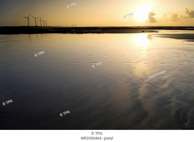 Sunset in the beach. Seashore with wind power generator