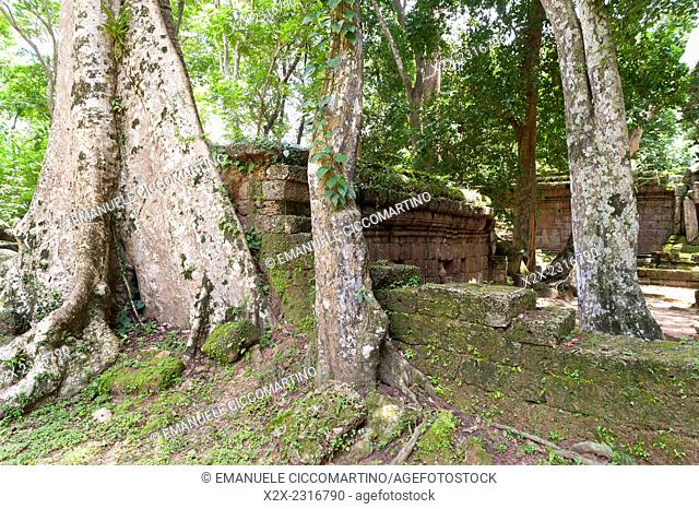 Angkor Thom, UNESCO World Heritage Site, Angkor, Siem Reap,Cambodia, Indochina, Southeast Asia, Asia