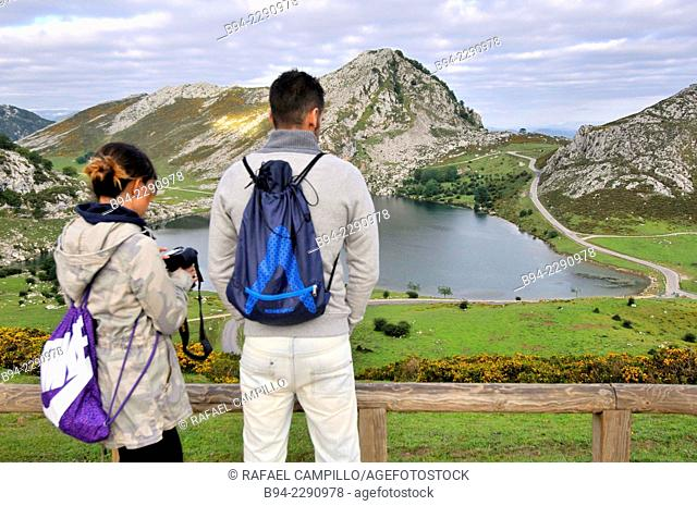 Enol Lake. Covadonga Lakes. Cangas de Onis Council. Picos de Europa National Park. Principaly of Asturias. Spain