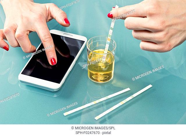 Personal urine testing kit