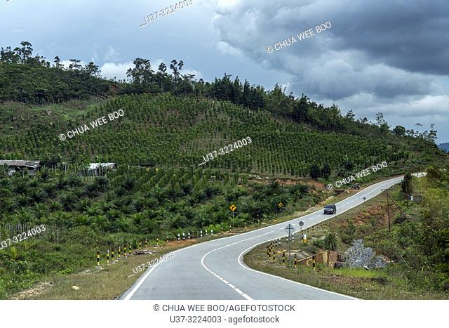 Road to Aruk Immigration Indonesia (West Kalimantan) and Biawak Immigration (Malaysia) border from Aruk Indonesia
