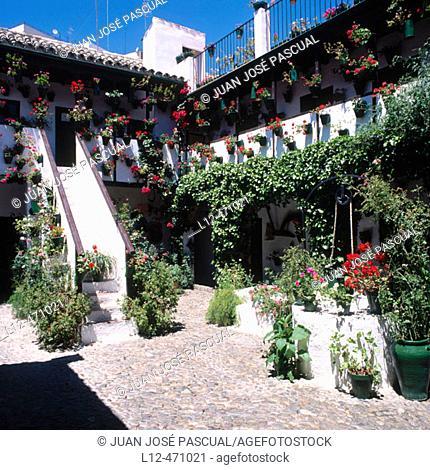 Patio at Calle San Basilio, Córdoba, Spain