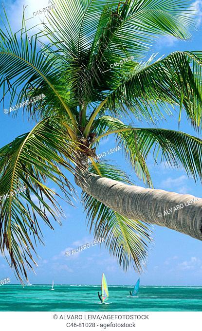 Pinney's Beach, Nevis. St. Kitts and Nevis