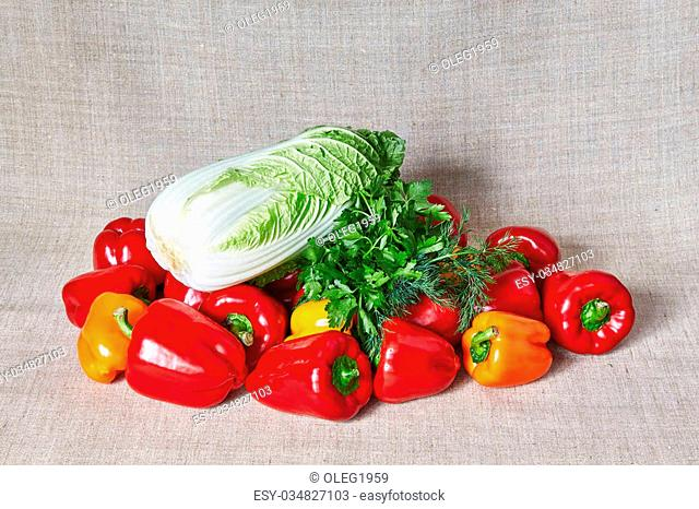 Red, yellow and-orange paprika, fennel and parsley, Beijing cabbage lies on a gray canvas