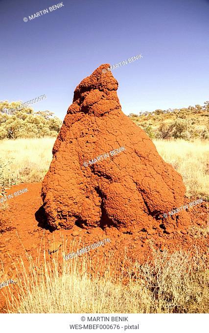 Australia, View of termite mound at Karijini national park